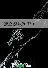 独立游戏30330